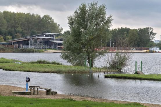 Natuur om de hoek: Grauwe abeel en inktzwam bij de Westbroekplas in Velserbroek