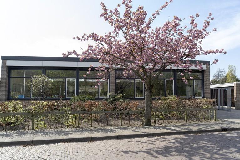 Basisscholen in Egmond aan den Hoef willen samen