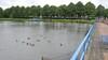 PvdA Beverwijk maakt zich grote zorgen: College, hoeveel gaat verplaatsing van vijver in park Overbos eigenlijk kosten?