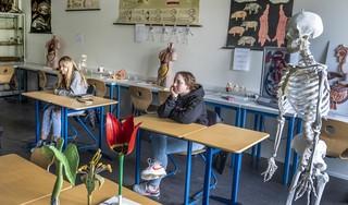 Buiten is het meivakantie, binnen kijken vijf leerlingen naar een plaatje van een baarmoeder: meer animo voor examentraining in coronaschooljaar