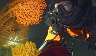 Melvin Redeker en Fiona van Doorn gaan het liefst waar anderen niet gaan: het avontuur vind je in de Noordzee