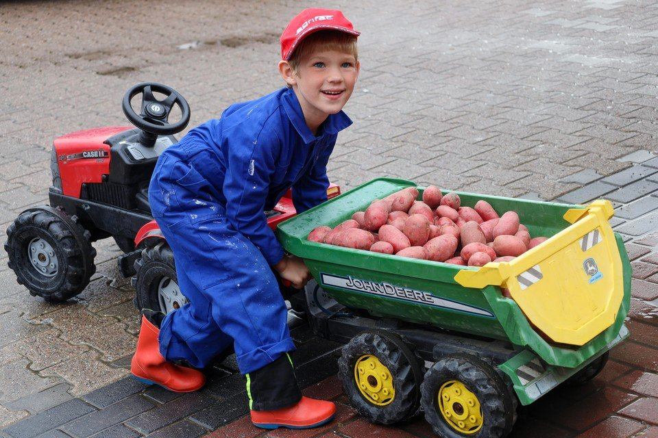 De vijfjarige Cees is er klaar voor. Als 'Boertje Bram' lost hij een voorraadje aardappels bij de Jumbo in Zwaagdijk.