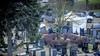 Politie gaat teleurstellende zoekactie naar Schagense Tanja Groen grondig evalueren, maar zegt nu al: 'Niks doen was geen optie'