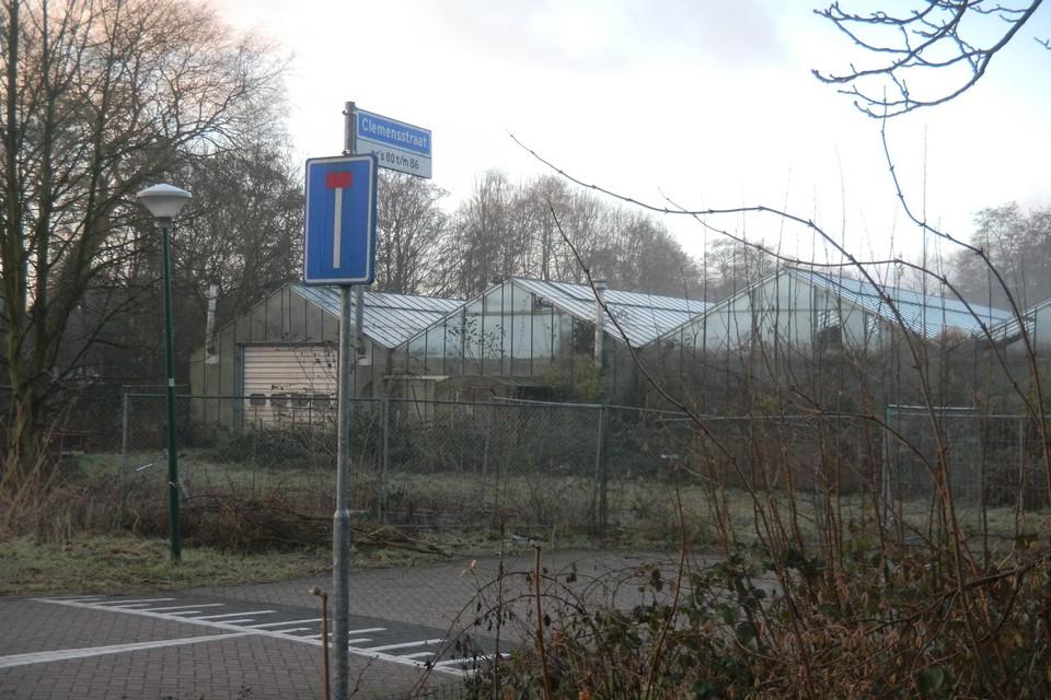 Het kwekerijterrein aan de Clemensstraat.