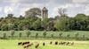 Van maagdelijk aardappelveld tot pittoreske woning in Kolhorn. Ruim 450 foto-inzendingen als ode aan het landschap in Hollands Kroon