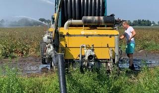 West-Fries landschap heeft echt dorst: elke dag stroomt half miljard liter IJsselmeerwater de polders in