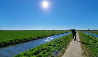 Levensgevaarlijk, het West-Friese landschap langs de Dijkweg richting Medemblik | Column
