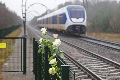 Het ging al mis bij de machinist van de trein die Dascha raakte, concluderen de particuliere onderzoekers