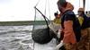 Vissers protesteren volgende maand tegen windparken in IJsselmeer. 'We krijgen veel minder ruimte'