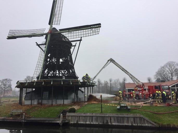 Riettouwtjes 'redding' voor molen Ceres in Bovenkarspel