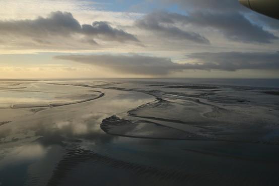 'Je tuurt de hele dag door een plastic raampje met 200 kilometer per uur - Pim Wolf telt vogels in de Waddenzee en Noordzee