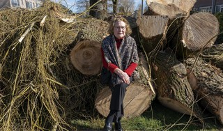 'Het is een grof schandaal', vindt Anneke Eradus-Korver. 'Een halve eeuw hebben we op deze bomen uitgekeken. Nu liggen ze plat.' En dat allemaal voor een doorvaarroute