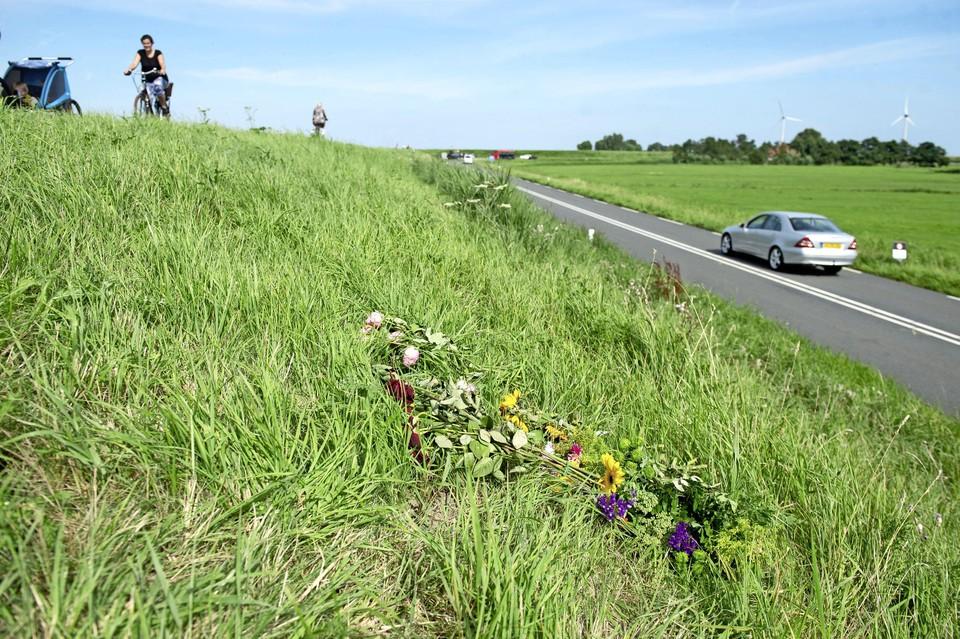 Bloemen op de Dijk tussen Monnickendam en Marken voor Tamar.