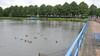 Vijver bij Sporthal Beverwijk wordt gedempt, maar verder ligt nog niks vast in park Overbos