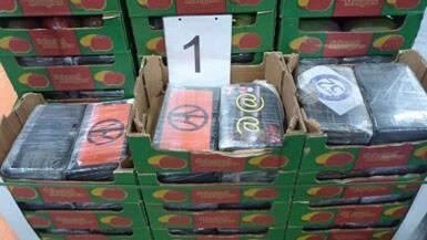 Douane onderschept 1170 kilo coke bestemd voor Zwaag, verstopt in een container met mango's