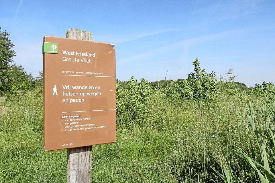 De Groote Vliet krijgt er ongeveer tien hectare bos bij.