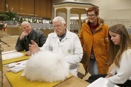Het beste dat Noord-Holland te bieden heeft op het gebied van kleindieren, stond in Winkel