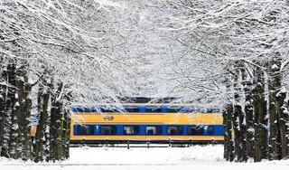 Lezersoproep: stuur ons uw mooiste sneeuwfoto!