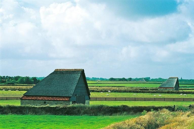 Hoge Berg op Texel uitgeroepen tot Icoonlandschap, het tweede van Nederland