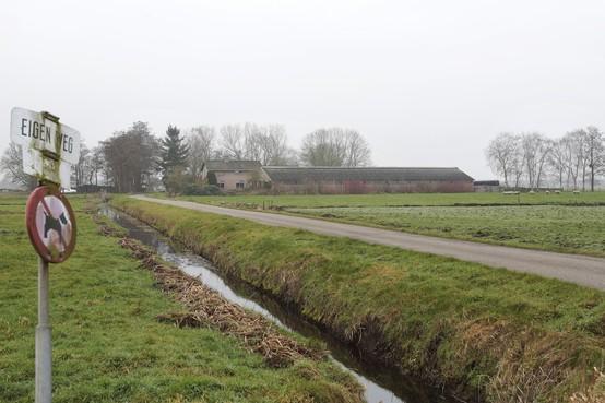 Provincie slaat eerste slag in nieuwe natuur maken: Loosdrechtse familie Meijers verkoopt met gemengde gevoelens agrarisch bedrijf