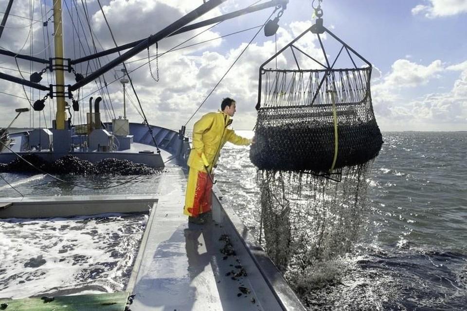 Een visser aan het werk op de Noordzee.