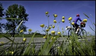 Duik op de fiets diep de polders in. Met de nieuwe audiotour. Je leert heel veel over het ons omringende landschap