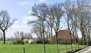 Weer een stapje dichter bij hospice op Westerland, sloop schuur als voorbereiding op bouw