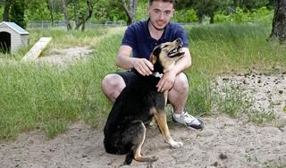 'Coronahonden' blijven in 't Gooi bij baasjes, in Eemland worden ze steeds meer teruggebracht naar het dierenasiel