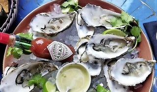 Oesters eten in Zeeland? Een tragisch gevalletje van 'streekdwang'   Column