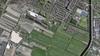 Polder- en vogelbeschermers verbijsterd over plannen zonneparken in Oosteinderpolder: 'Jaarlijks komen hier duizenden vogels'