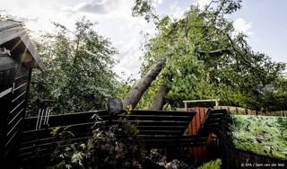 Gemeente checkt bossen bij Leersum op stormschade