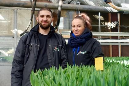 Slowaakse Mario en Poolse Agnieszka werken ondanks corona door in West-Friese tulpen: 'Het is hier net zo veilig'