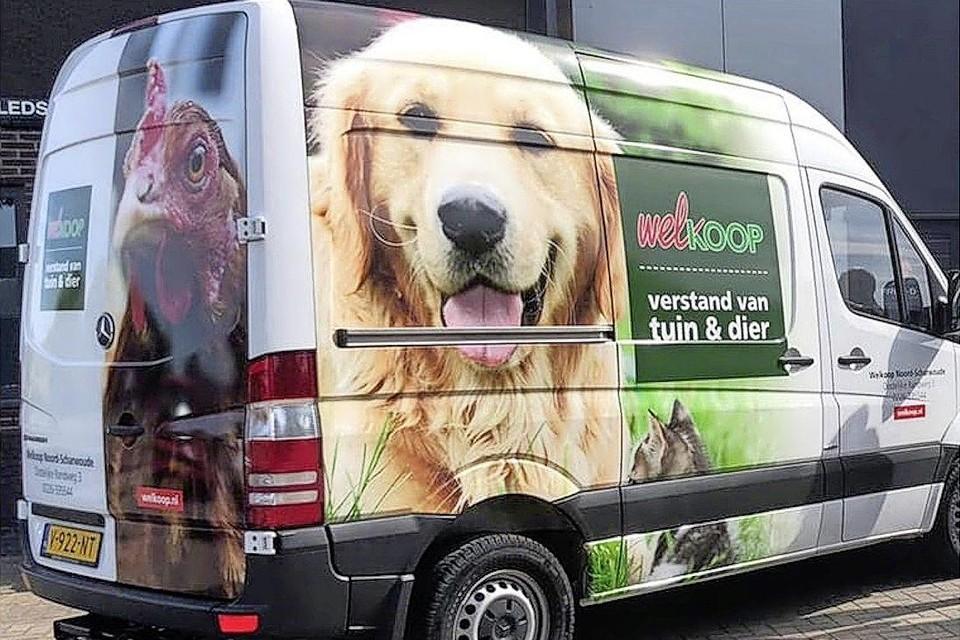 De stickers kunnen van de bus zijn afgehaald.