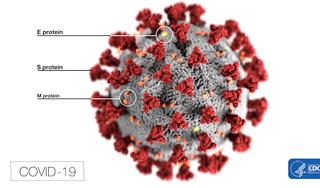 Aantal coronabesmettingen loopt snel op in West-Friesland; in een week tijd 106 nieuwe besmettingen