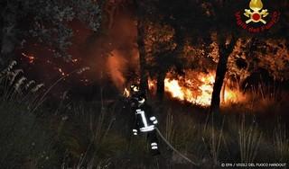 Sicilië kampt met natuurbranden, vliegverkeer stilgelegd