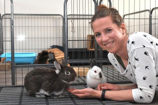 Sandra Korhorn traint en koppelt konijnen