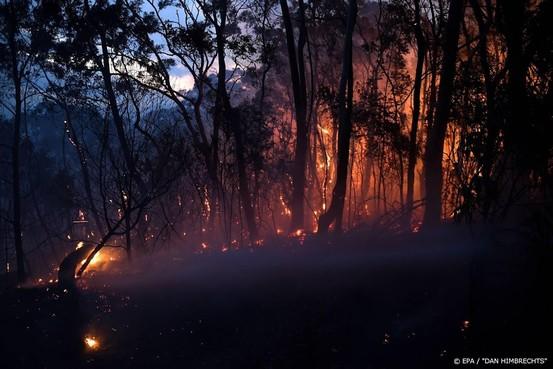 Doden door natuurbranden Oost-Australië