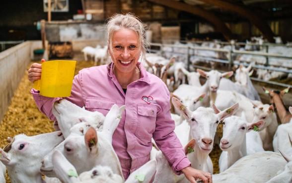 'Ze gaf mij een flinke boks met haar hoorns tegen mijn slaap'; geitenboerin Wendy schrijft over haar leven in 'Vooruit met de geit!'