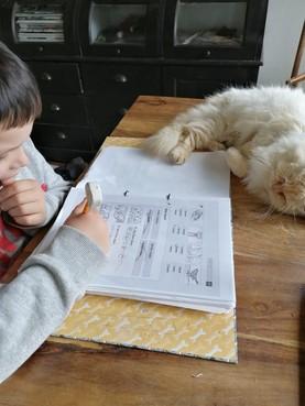 Leerlingen De Branding Den Oever werken nu weken op de computer, maar 'digitaal onderwijs is niet de oplossing'
