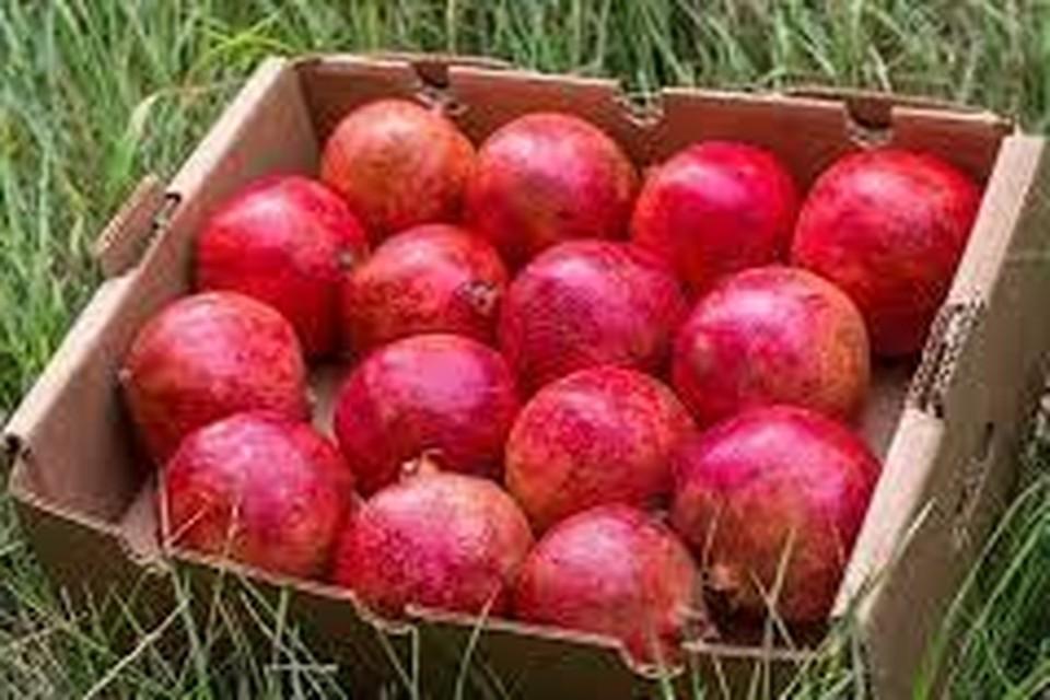 Een kistje granaatappels van crowdfarming.