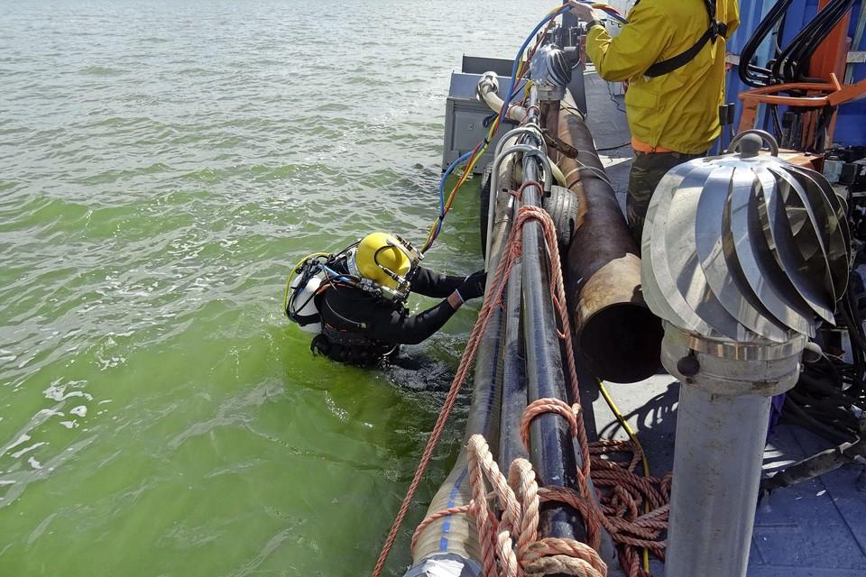 Vanaf het ponton gaat de duiker te water in het Markermeer.