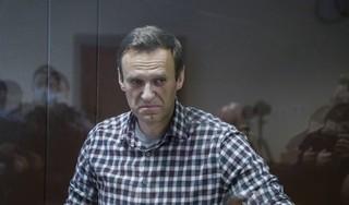 Bondsdagcomité noemt behandeling Navalni 'gerichte foltering'