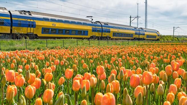 Geen extra spoor nodig tussen Schagen en Den Helder, ondanks de geplande verdubbeling van het aantal intercity's