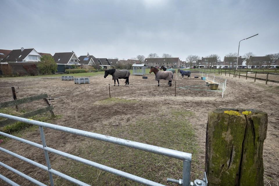 Op de plek van de manege tussen Hofgeesterweg en De Kamp worden woningen gebouwd.